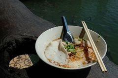 Noodles in the bowl. royalty free stock photography