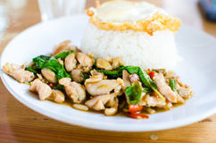 Thai Food Pad Kaprao. Eat kaprao chicken thai food Royalty Free Stock Photo