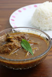 Thai food pork curry with rice Royalty Free Stock Photo