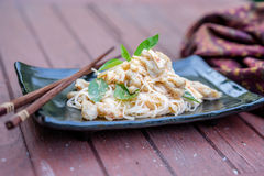 Thai food red chicken curry Stock Image