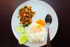 Thai Food Rice Topped with Stir-Fried Pork and Basil with Fried Egg in White Dish Royalty Free Stock Photography