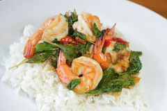 Thai Food Spicy Basil Shrimp Fried with Rice (Krapao Kung) Royalty Free Stock Image