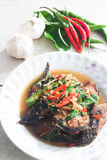 Thai Food Spicy Cat Fish with vegetables (Pla Duk Pad Ped) Royalty Free Stock Image