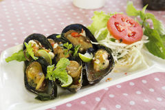 Thai food spicy Mussel Stock Photography