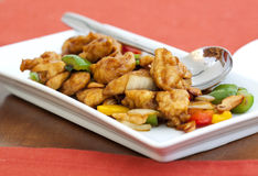 Thai food,stir fired chicken with cashew nuts Stock Photography