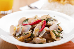 Thai food Stir Fried Clams. Chinese style Stock Photography