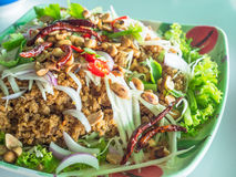 Thai food, yam pla duk foo. Yam pla duk foo, a classic Thai meal, consisting of minced and fried catfish, shreded green papaya, fresh and dried chili pepper, dry stock image
