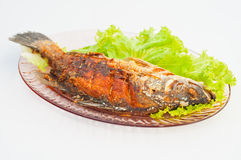 Thai fried fish. For lunch or dinner Royalty Free Stock Image