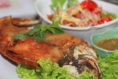 Thai Fried fish Stock Photography