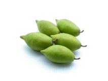 Thai fruit hog plum Stock Images