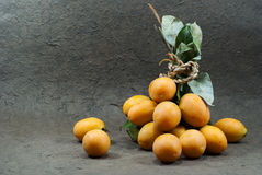 Thai Fruit , Maprang Fruit on the gray background. Royalty Free Stock Image