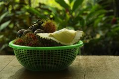 Many Thai fruits in a basket. stock photos