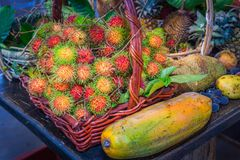 Thai fruits in the garden to bring tourists to eat. Papaya, pineapple, jackfruit, mango, muffin, leaf,rattan, durian Royalty Free Stock Images