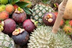 thai frukt Royaltyfri Foto