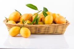 thai frukt för söt Marian plommon på vit bakgrund (den Mayongchid översikten Arkivfoton
