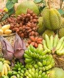thai fruktgrupp Royaltyfri Foto