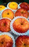 Thai Gala apples Royalty Free Stock Photo