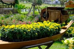 Thai garden style with yellow flower. Look relaxed stock photography