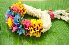 Thai garland colorful flower Stock Photo