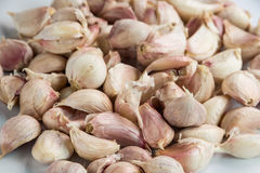 Thai garlic on white dish. Close up to garlic on white dish Stock Photography