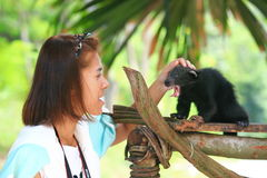 Thai girl with bearcat Royalty Free Stock Photography