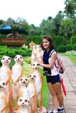 Thai girl in beautiful garden Royalty Free Stock Photo