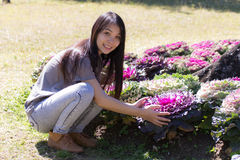 Thai Girl in purple cabbage farm Stock Photos