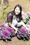 Thai Girl in purple cabbage farm Stock Photography