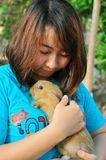 Thai girl with rabbit. Portrait Thai girl take care a rabbit royalty free stock image
