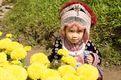 Thai girl wear costume traditional of ethnic hmong Stock Photo