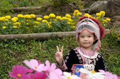 Thai girl wear costume traditional of ethnic hmong. For take photo in garden at Doi Pui Tribal Village and National Park in Chiang Mai, Thailand Royalty Free Stock Photography