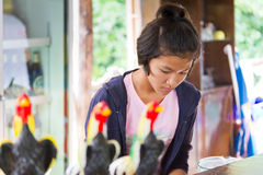 Thai girl at work on the bar in local restaurant Stock Photos