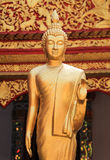 Thai golden buddha statue. Stand in tample in Thailand Royalty Free Stock Images