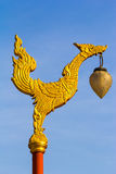 Thai golden swan in literature at temple Stock Images