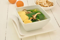 Thai Gord soup. Stock Images