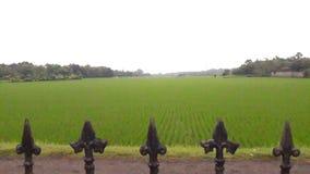 Thai gospodarstwo rolne fotografia royalty free