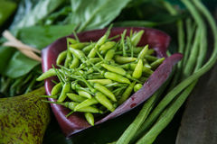 The Thai green chilies, small but powerful Royalty Free Stock Image