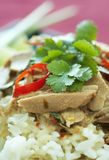 Thai Green Curry Fish Royalty Free Stock Photos