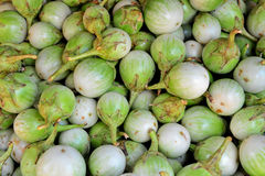 Thai Green Eggplant Royalty Free Stock Photography