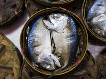 Thai gulf Mackerel fish boiled cooking ready to eat. Thai gulf Mackerel fish boiled cooking ready to eat pre-sale in bamboo tray in tradition market thailand stock images