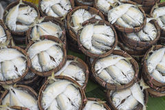 Thai gulf mackerel fish steamed on bamboo basket thai market ; Thai people called this fish is Pla-too Royalty Free Stock Photos