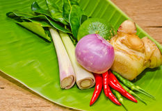 Thai herb. Royalty Free Stock Photos