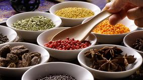 Thai herb spices ingredients set stock images
