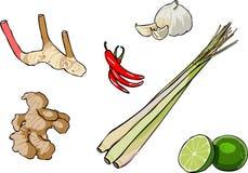 Thai Herb stock illustration