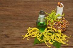 Thai  herbal compress balls, essential oil bottle Royalty Free Stock Photos