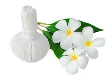 Thai herbal compress for spa with frangipani. Thai herbal compress for spa with white plumeria flower  (frangipani)  isolated on white Stock Photography