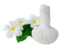 Thai herbal compress for spa and frangipani. Thai herbal compress for spa with white plumeria flower  (frangipani)  isolated on white Stock Image