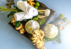 Thai Herb. Al Compress Technique Healing Spa from Thailand Stock Image