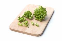 Thai herbal food ingredient Cowslip flower Royalty Free Stock Image