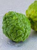 Thai herbal ingredient spas Kaffir lime . Stock Images
